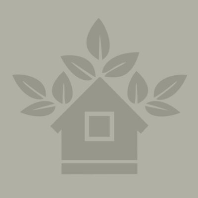 treehouse-placeholder-web